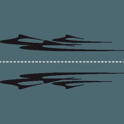 Pegatinas En Vinilo Autoadhesivo Para Laterales De Coches Y Motos